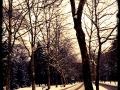 Gelände im Schnee
